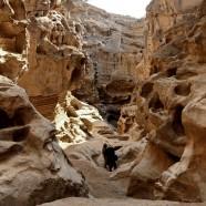Archäologie im Iran