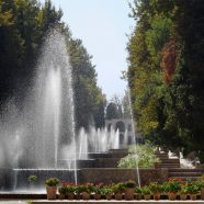 Shazdeh Garten nach zweimonatiger Schließung wiedereröffnet